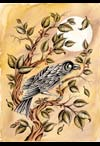 bird tattoo art